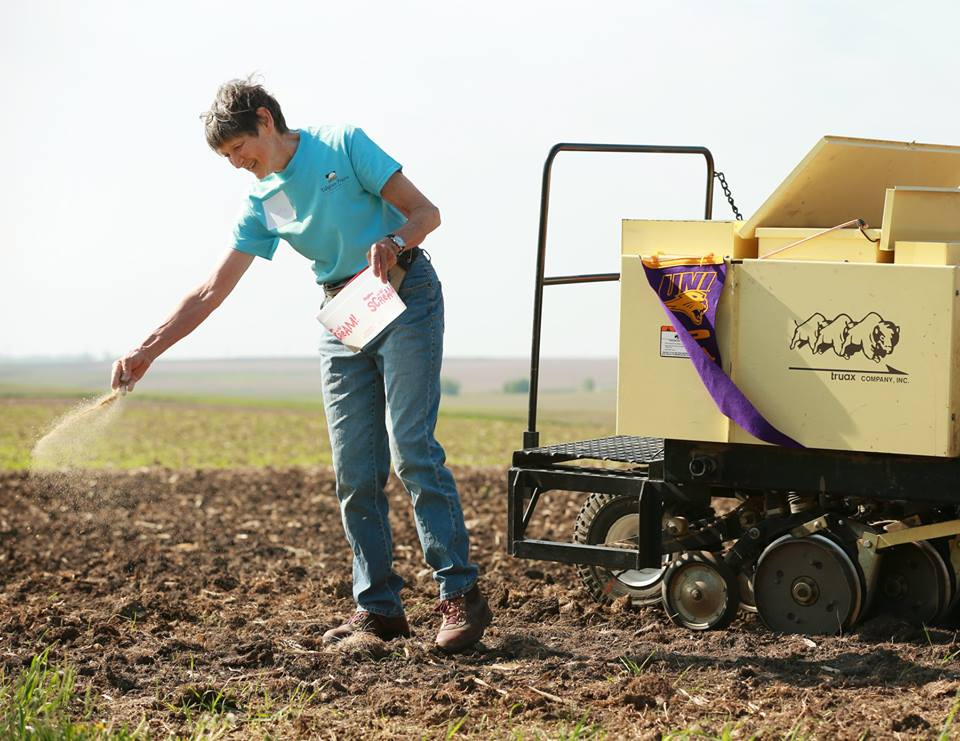 Cathy Irvine sows the first seeds at Irvine Prairie